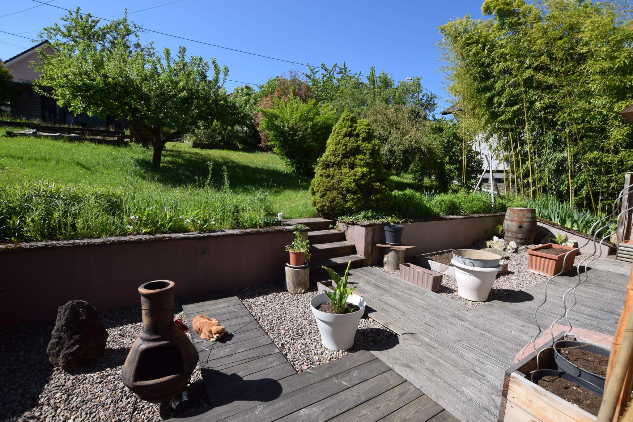 TRES BELLE MAISON lumineuse.... donnant sur terrasse abritée, terrasse et  jardin
